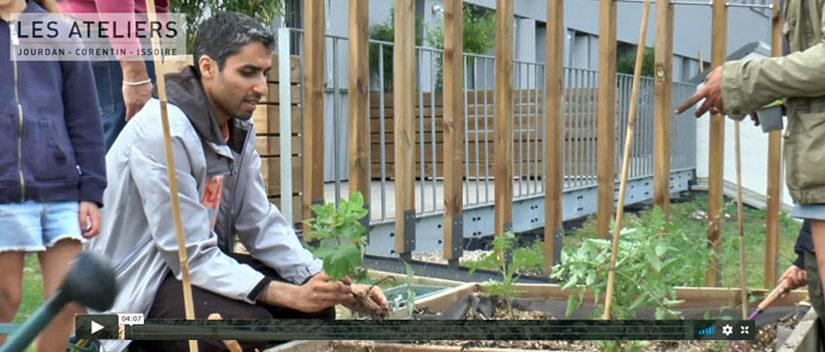 Témoignage de jardiniers